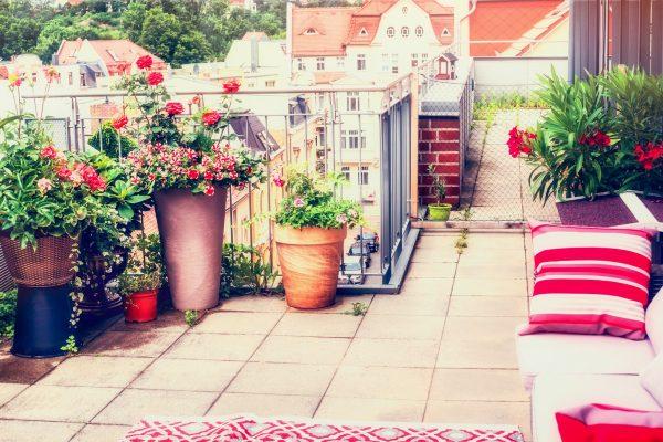 Przepiękny ogród na balkonie? Sprawdź jak go przygotować
