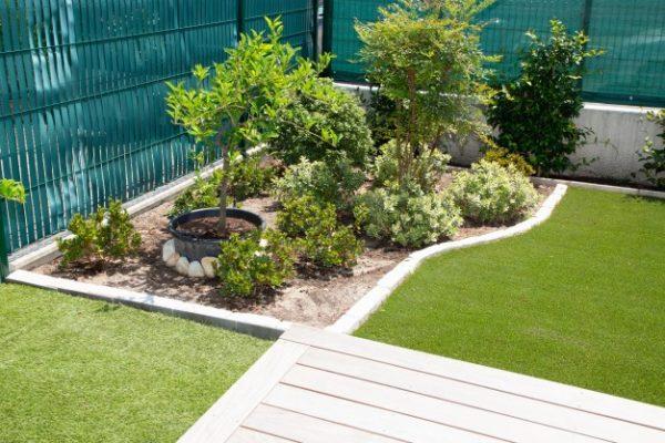 Jak przygotować ogród po przerwie zimowej