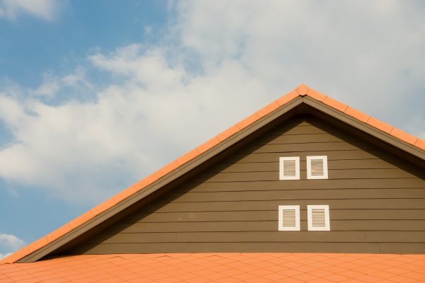 Asekuracja na dachu